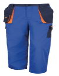 Work-Guard Lite Trousers